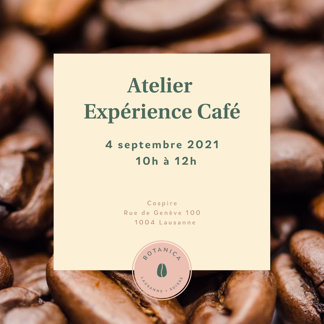 Atelier Experience Cafe